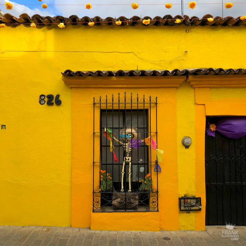 cada amarilla, que ver en Oaxaca