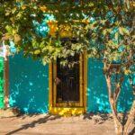 fachada con arboles, casas viejas, amarillo con verde
