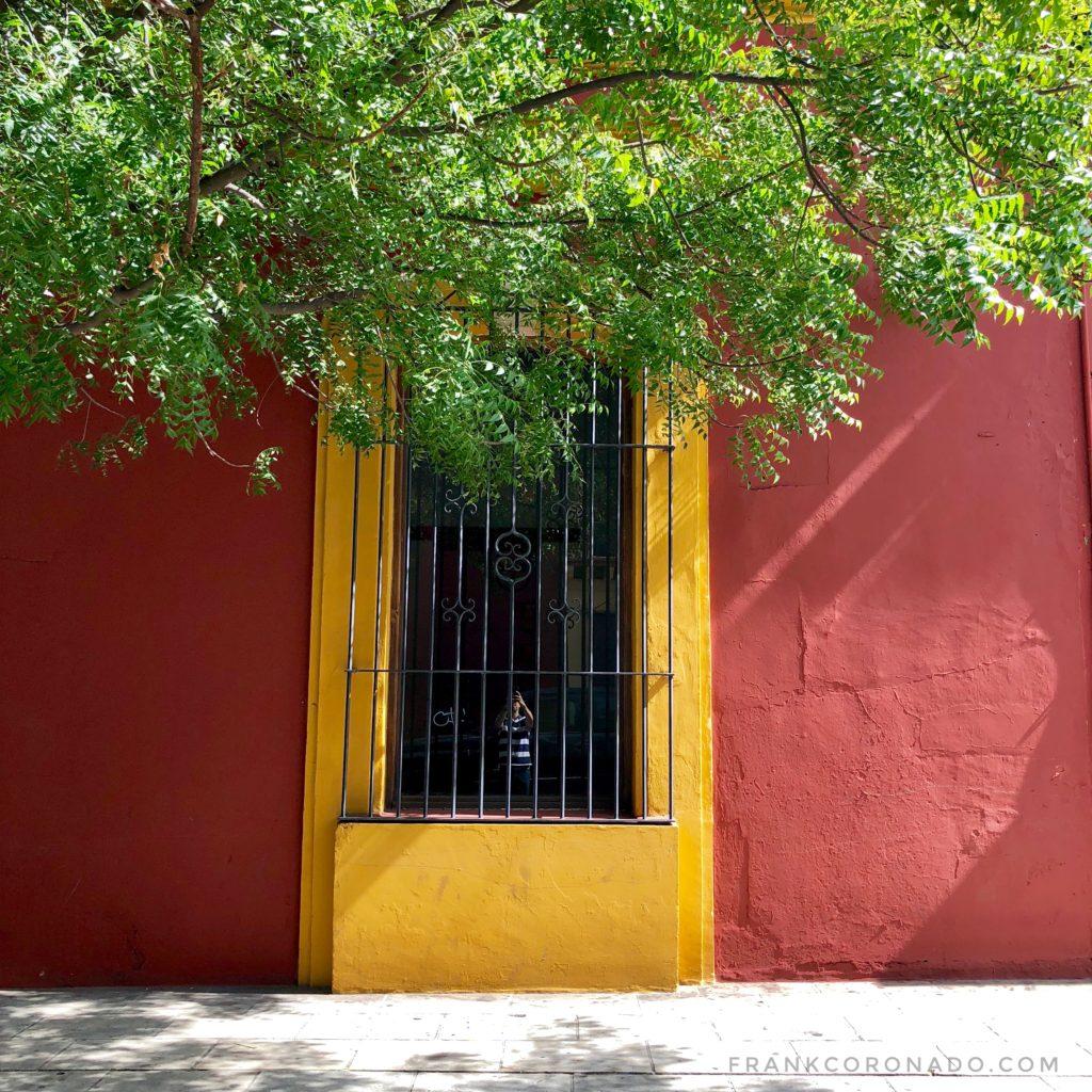 puertas y ventanas del centro de oaxaca