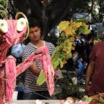 celebraciones oaxaqueñas