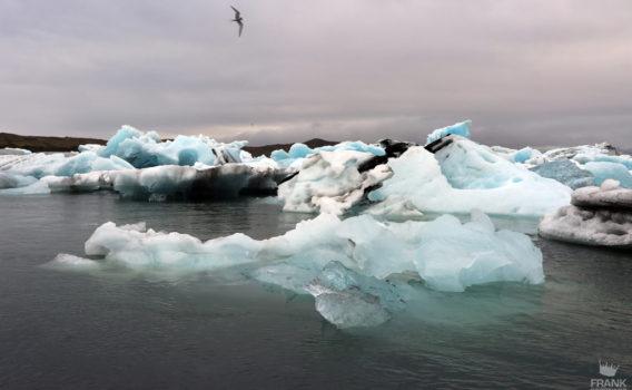 icebergs islandia
