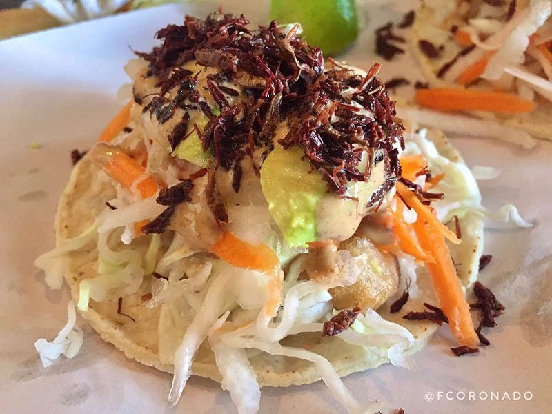 que comer en la ciudad de Oaxaca