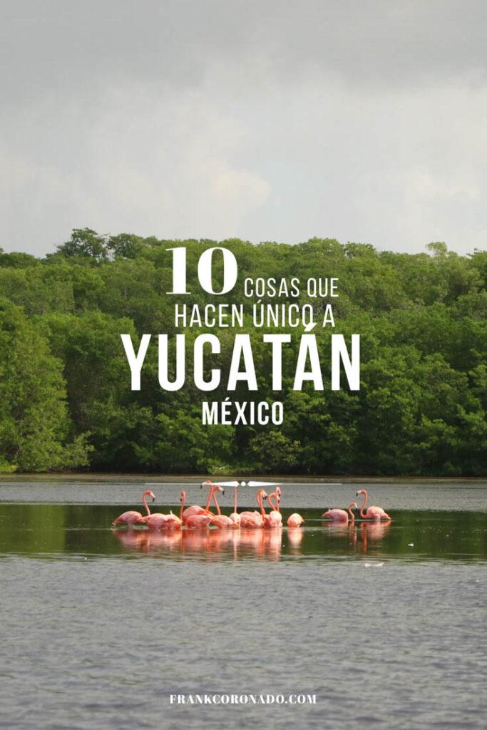 Que ver en Yucatán Pinterest