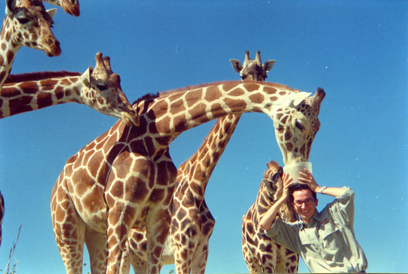 Jirafas Africam Safari Frank Coronado
