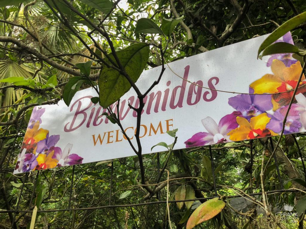 entrada museo orquideas veracruz