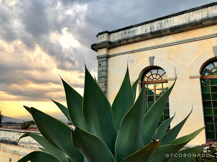 museos y galerias de oaxaca