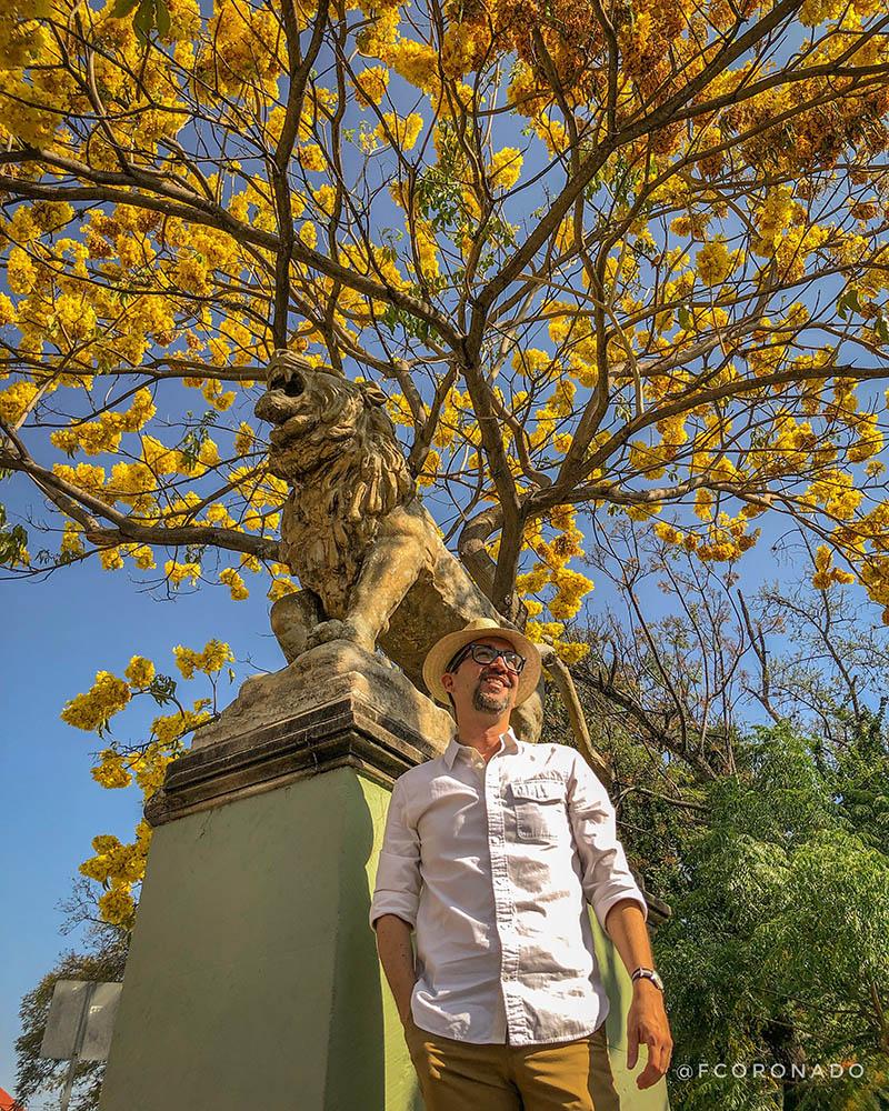 información sobre Oaxaca