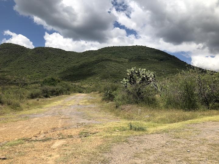 Piedra inscrita jalieza, cultura zapoteca, zapotecos oaxaca