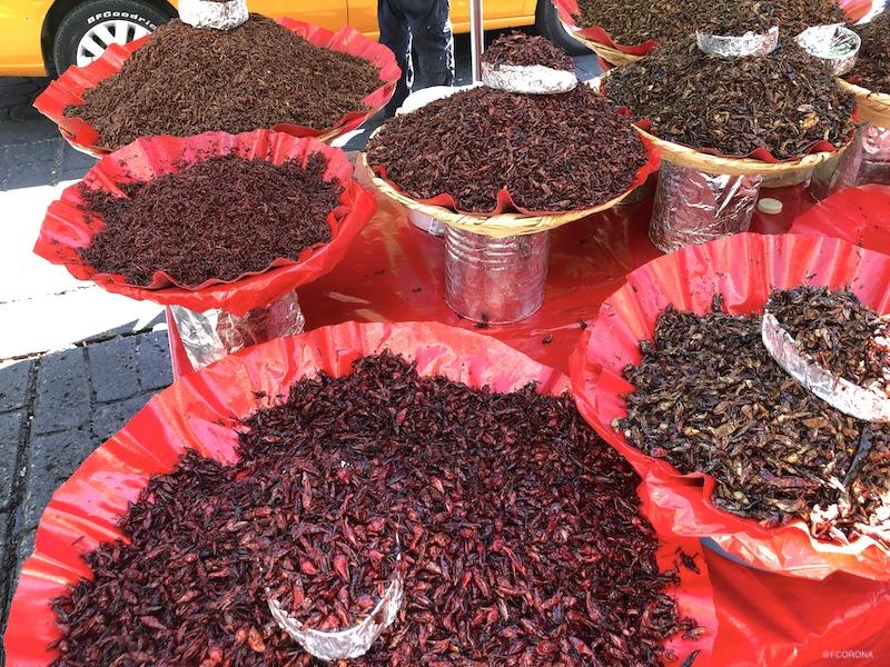comida de oaxaca, que probar en mexico, chapulines en oaxaca