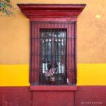 centro de oaxaca, casa de colores, ventana con flores