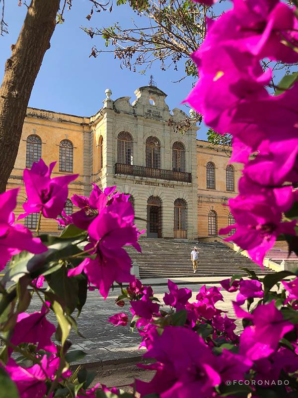 recorridos por Oaxaca