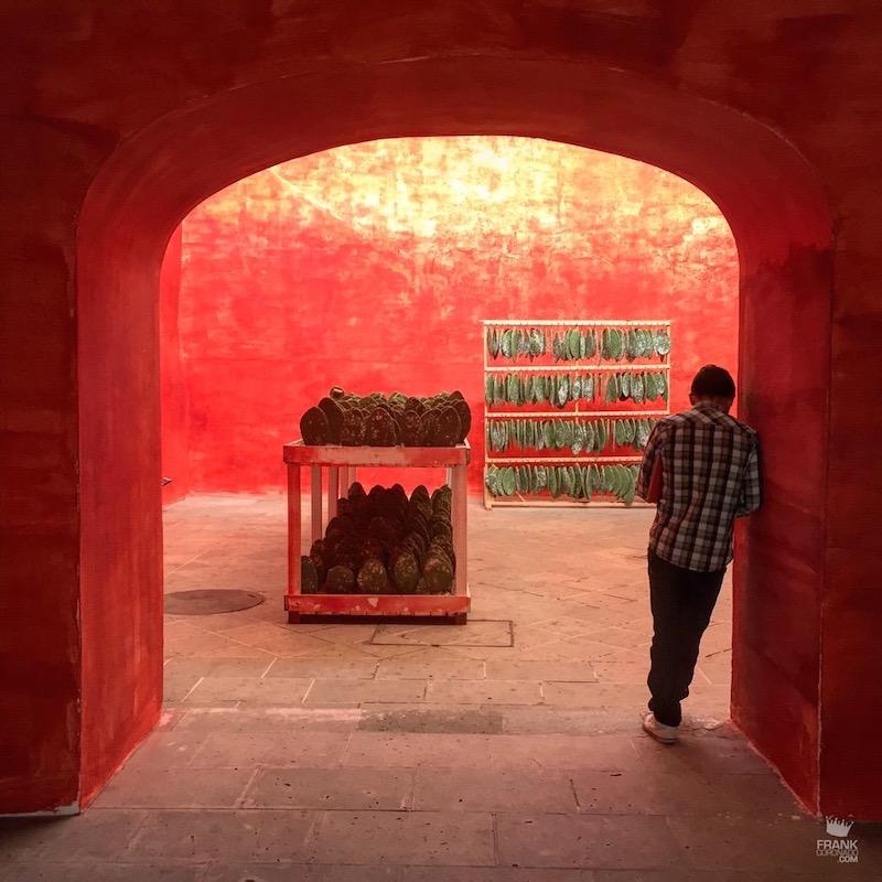 Museo de Arte Contemporaneo de oaxaca
