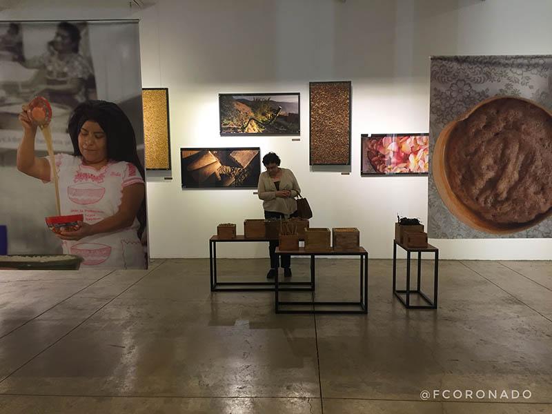 exposiciones en oaxaca