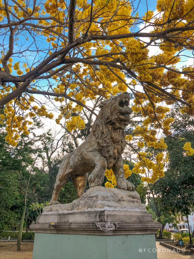 parques de Oaxaca