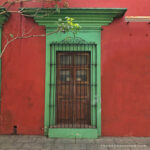 que se puede hacer en Oaxaca