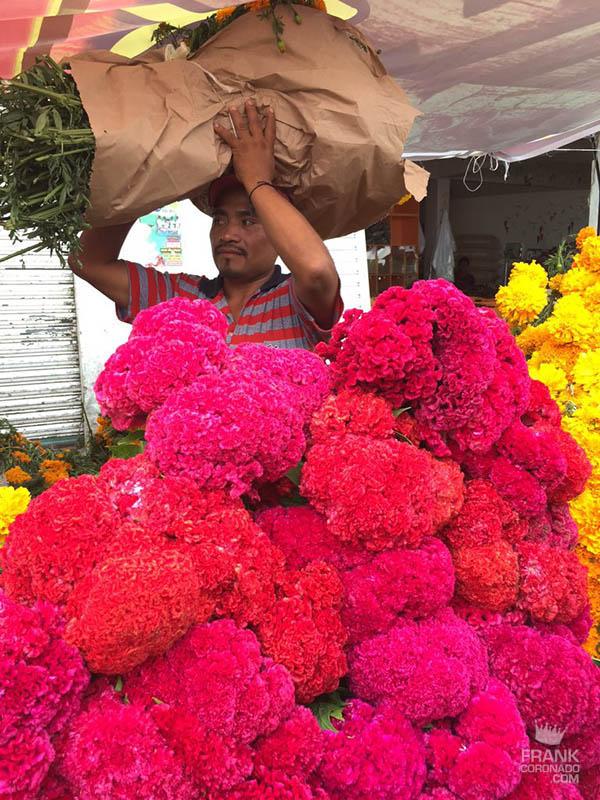 flores del dia de muertos