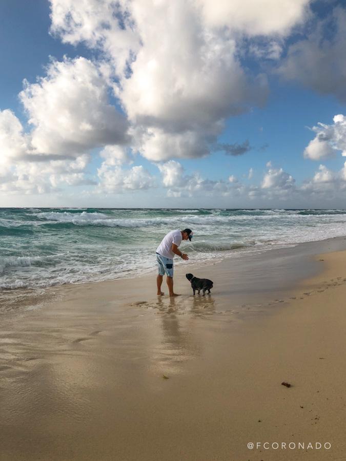 que hacer en el caribe mexicano