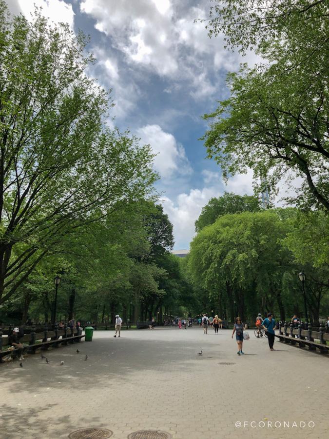 Parque urbano nueva york