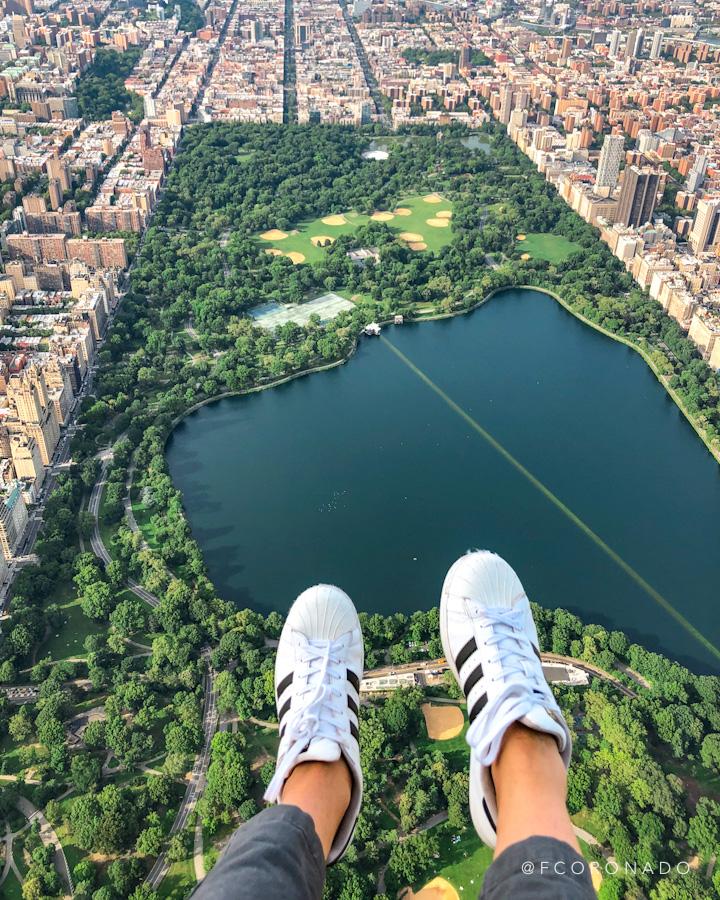 vista aerea de central park