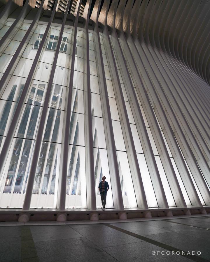exterior del oculus de noche