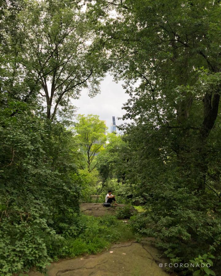 areas verdes en central park