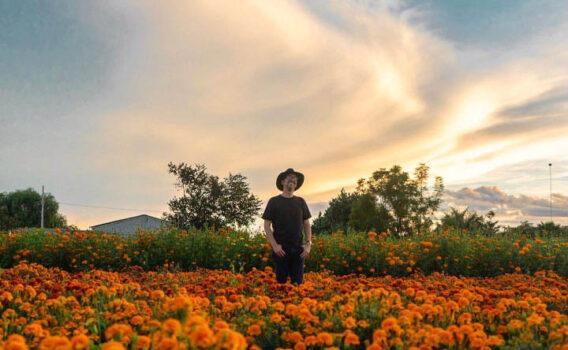 fotografias en campos de cempasuchil de oaxaca